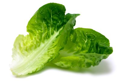 can guinea pigs eat sweet gem lettuce